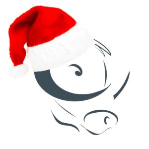 Winterton Christmas logo